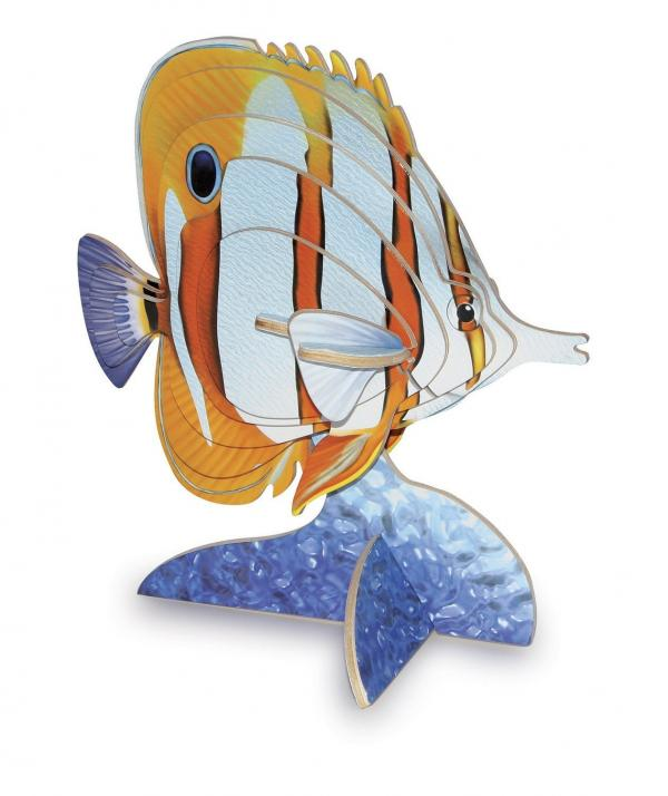 WOODEN BUTTERFLY FISH KIT